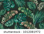 tropical jungle leaves  palms ... | Shutterstock .eps vector #1012081972