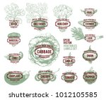 collection of hand drawn... | Shutterstock .eps vector #1012105585