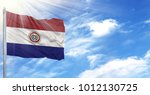 flag of paraguay on flagpole...   Shutterstock . vector #1012130725