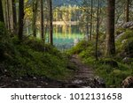 Path Through A Forest And Lake...