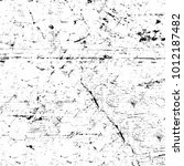 chaotic grunge ink particles.... | Shutterstock . vector #1012187482