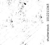 chaotic grunge ink particles....   Shutterstock . vector #1012211365
