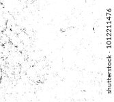 chaotic grunge ink particles.... | Shutterstock . vector #1012211476