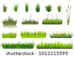 Grass Vector Grassland Or...