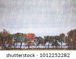 autumn park  rainy background   ... | Shutterstock . vector #1012252282