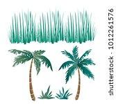 Vector Set Of Tropical Long...