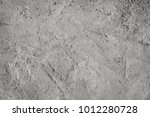 abstract background grey | Shutterstock . vector #1012280728
