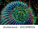round barrel cactus with... | Shutterstock . vector #1012398526