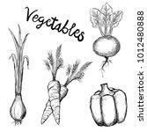 vector set of different hand... | Shutterstock .eps vector #1012480888