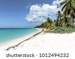 republic santo domingo  ... | Shutterstock . vector #1012494232