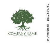 oak tree logo design | Shutterstock .eps vector #1012534762