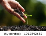 hands of farmer growing and... | Shutterstock . vector #1012542652