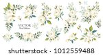 set of floral branch. flower... | Shutterstock .eps vector #1012559488