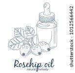 rosehip oil and berries in... | Shutterstock .eps vector #1012566442