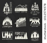 camping badges  mountains... | Shutterstock .eps vector #1012574578