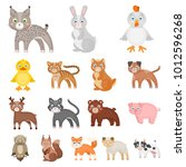 toy animals cartoon icons in... | Shutterstock . vector #1012596268