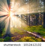 a gentle beautiful mist in the... | Shutterstock . vector #1012612132