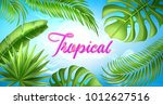realistic tropical leaves... | Shutterstock .eps vector #1012627516