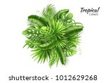 realistic tropical leaves... | Shutterstock .eps vector #1012629268