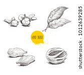 hand drawn sketch spices set....   Shutterstock .eps vector #1012639285