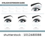 eyelash extension guide.... | Shutterstock .eps vector #1012680088
