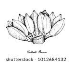 fresh fruits  illustration of... | Shutterstock .eps vector #1012684132