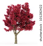 3d Cherry Tree With Red Leaves...