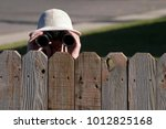 boy peering over fence with... | Shutterstock . vector #1012825168