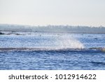 water spray from a small boat. | Shutterstock . vector #1012914622