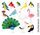birds tropical and exotic.... | Shutterstock .eps vector #1012971202