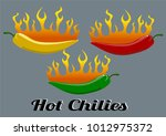 hot chilies with flames  food... | Shutterstock .eps vector #1012975372