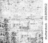 texture grunge monochrome.... | Shutterstock . vector #1013050012