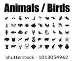 Big Set Birds. Birds Flying ...