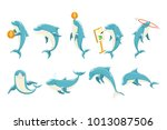 bottlenose dolphin performing... | Shutterstock .eps vector #1013087506