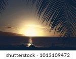 sunset on shark cove beach and... | Shutterstock . vector #1013109472