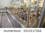 food is waiting for students.... | Shutterstock . vector #1013117266