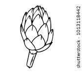 artichoke vector illustration.... | Shutterstock .eps vector #1013118442