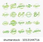 set of hand written lettering... | Shutterstock . vector #1013144716