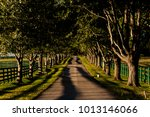 a scenic view of a one lane ... | Shutterstock . vector #1013146066
