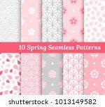 ten spring seamless patterns.... | Shutterstock .eps vector #1013149582