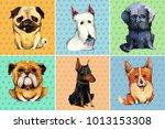 hand drawn set of six... | Shutterstock . vector #1013153308
