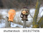 clay jugs on a wooden fence.... | Shutterstock . vector #1013177656