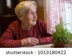 an elderly woman looks out the... | Shutterstock . vector #1013180422