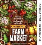 farm market vegetables sketch... | Shutterstock .eps vector #1013195602