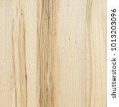 a fragment of a wooden panel... | Shutterstock . vector #1013203096