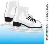 the shoe with skates for riding ...   Shutterstock .eps vector #1013231602