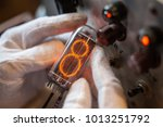 hands in white gloves holds a... | Shutterstock . vector #1013251792