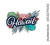 hawaii hand written lettering... | Shutterstock . vector #1013274142