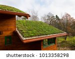 Wooden House With Extensive...