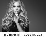 female hairstyle long and... | Shutterstock . vector #1013407225
